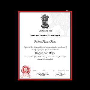 fake diploma india, fake degree india, fake graduation degree india, fake bachelors degree india, fake bachelors degree certificate in india, Rajiv Gandhi Proudyogiki Vishwavidyalaya, University of Kota, Anna University, University of Rajasthan