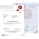 High quality college diploma next to University of Cophenbagen transcript showing academic classes and scores