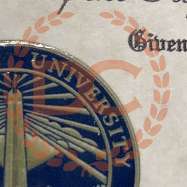 up-close of a university seal on a diploma in a raised blue color with shiny gold border
