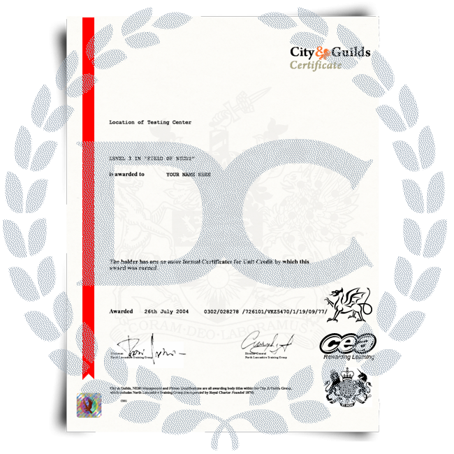 Buy Fake City and Guilds Certificate! Top Premium Layouts! Updated 2020! Just $285.99!
