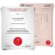 Diploma from University of Oslo featuring big red embossed seal with student details next to set of mark sheets showing academic college classes and grades on security paper