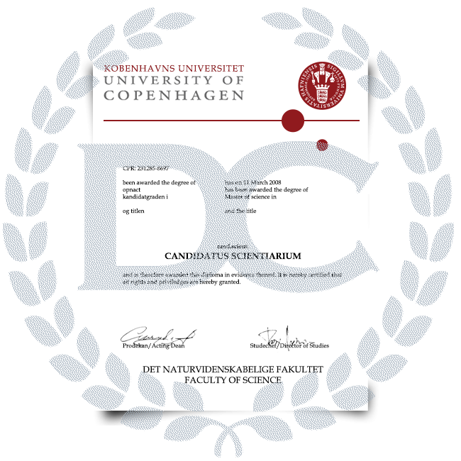 Buy Fake Diploma from Denmark University! Top Premium Layouts! Updated 2020! Only $199.00!