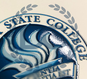 fake daytona state college diploma with raised seal